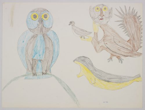 Imaginary design depicting an owl standing beside a seal and another bird-like creature with human hands holding a small bird. Scene presented in a two-dimensional style and using blue, yellow, brown, green, and black.