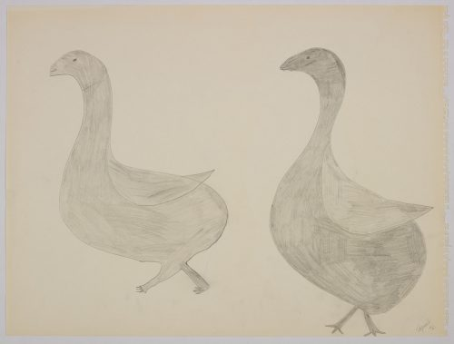 Playful scene depicting two similar birds walking towards the left. Scene presented in a two-dimensional style and using grey.