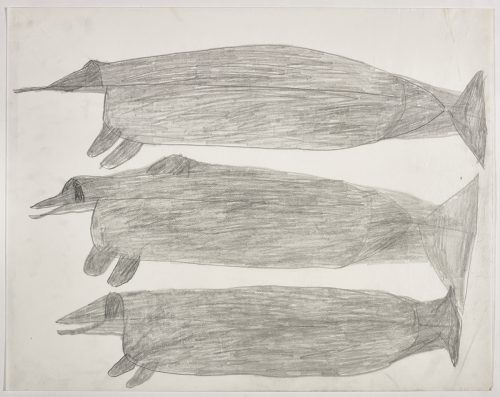 A huge narwhal on the top and two huge whale-like creatures on the bottom of the page. They are depicted in a flat, two-dimensional style with minimal detail using grey.