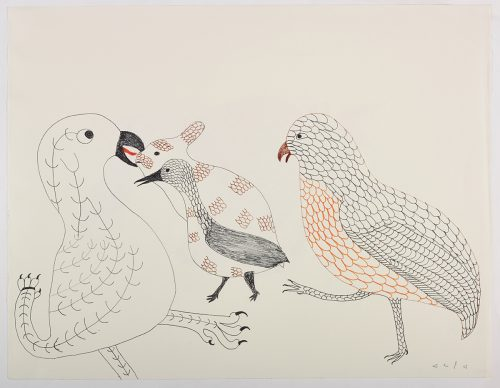 There is a large bird with a leg for a tail facing a smaller bird and a rabbit that share a similar pattern on their bodies on the left side of the page next to another bird with large rounded feathers all over on the right side of the page. They are depicted in a flat, two dimensional style with lots of detail using black, orange, red and brown.
